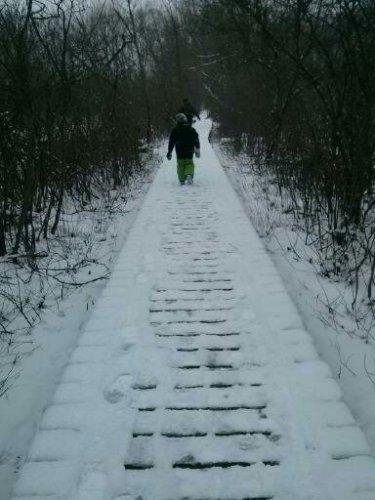a Christmas day hike